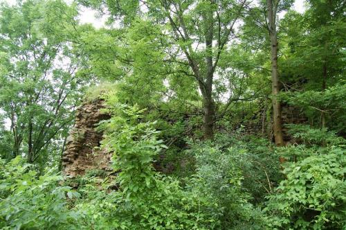 Cetatea de la Bologa